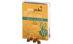 Gommes Propolis Miel & Eucalyptus